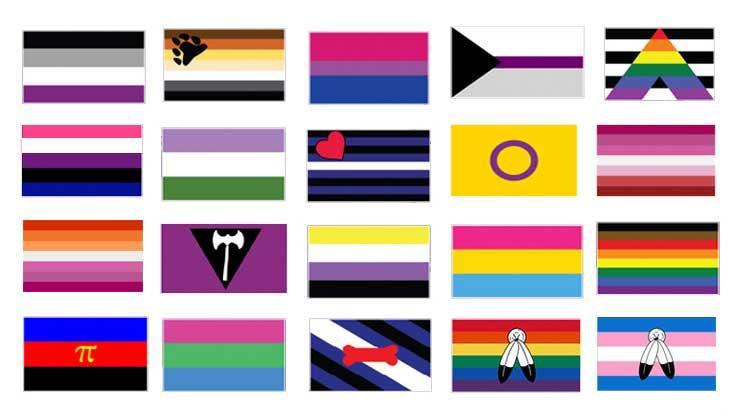 LGBTQ+ Identity Flags